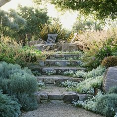 Incorporate rocks and gravel wherever possible. This can mean a slate patio, a g. Incorporate rocks and gravel wherever possible. This can mean a slate patio, a gravel path, stone steps or incorporating existing boulders and exposed ledge. Dry Garden, Garden Paths, Cacti Garden, Vegetable Garden, Landscape Design, Garden Design, Landscape Architecture, Sloped Landscape, Cottage Gardens