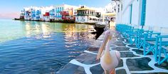 Petros the Pelican: The Mascot of Mykonos