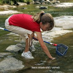 Use Activity Finder to find outdoor activity ideas for your family that have been tested by National Wildlife Federation staff - sort by age, cost, available time and other interests.