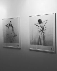 Tavlor från Fotografiska.