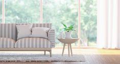 Φυτά εσωτερικού χώρου που καθαρίζουν την ατμόσφαιρα του σπιτιού σου
