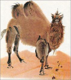 Bilderzoo I Alfred Könner I Ilustrátor Mirko Hanák Plant Painting, China Painting, Camelo, Japanese Drawings, Sketchbook Inspiration, Gaucho, Watercolor Animals, Character Design Inspiration, Artist Art