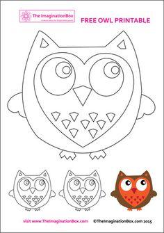 Free owl activity