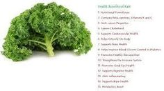 Kale is low in calorie, high in fiber and has zero fat. One cup of Kale has only 36 calories, 5 grams of fiber and 0 grams of fat. It is great for aiding in digestion and elimination with its great fiber content. Rain International, Kale Kale, Healthy Alternatives, Benefit, Seeds, Fiber, Nutrition, Organic, Pure Products