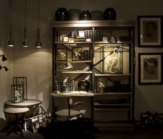 Cabinet of curiosities this time with sceletons in display cabinets.