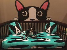 I'm thinking this would be perfect for Rocky (my Boston Terrier)