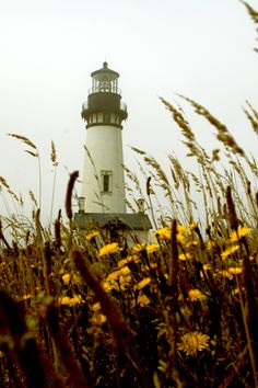 lighthouse-thank you baby!