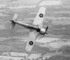 An absolutely fantastic shot of one of the four Focke–Wulf Fw 190s of 1426 Enemy Aircraft Flight, winging over and diving for the English countryside. The underside of the Fw 190 would have been bright yellow, so this would have been a really spectacular image had it been in colour. Photo: RAF