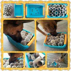 Spel 14 (hondenspel hond spel denkwerk hersenwerk brain dog game play diy) www.facebook.com/denkspellenvoorjehond