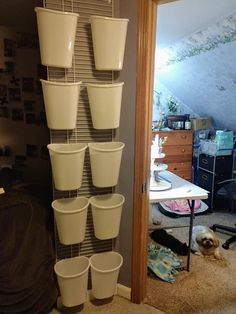 Florist Window Display, Craft Room Storage, Craft Business, Crafts, Home, Manualidades, Ad Home, Handmade Crafts, Homes