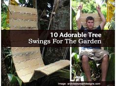 10 Adorable Tree Swings For The Garden
