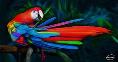 """Por favor dale Retweet si te gusta al combinación de Arte y Naturaleza  """"Guacamaya de Colores"""" http://aramisfraino.com"""