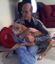Caring Patrolman rescues and provides loving home to severely abused dog » DogHeirs | Where Dogs Are Family « Keywords: Pit Bull, neglected dog, cop, police
