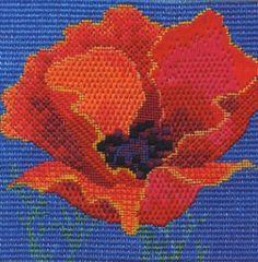 Red Poppy Canvas Work Kit by Derwentwater Designs