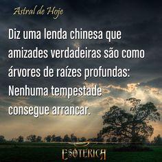 #astral #astrologia #bênção #bemestar #amizade #amigas #amigos #amigo #amiga #frase #frases