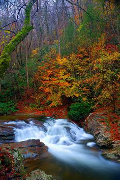 ~~Laurel Creek Cascades ~ autumn, Cades Cove, Great Smoky Mountains National Park, Tennessee by abennett223~~