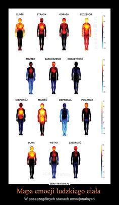 Mapa emocji ludzkiego ciała – W poszczególnych stanach emocjonalnych