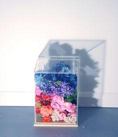 "vvolare:  ""Flower Gradient"" Sara Cwynar"
