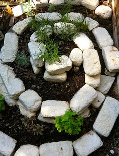The Advantages of Planting an Herb Spiral
