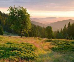 Šumava montanges - paysage et nature de la Tchéquie