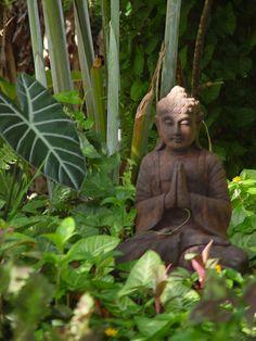 Buddah gardens at Honulani