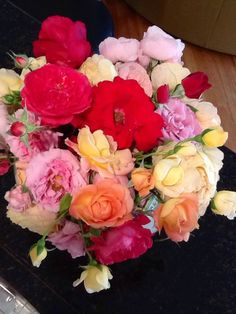 Roses from my garden