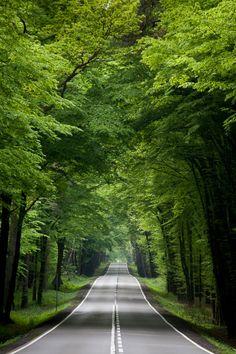 sublim-ature:  Upper Silesia, PolandWojciech Pietrow