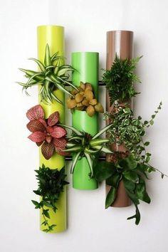 20 idee originali per decorare una parete con delle piantine! Lasciatevi ispirare…
