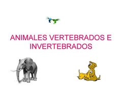 Check out this #Kahoot called 'Naturales. Clasificación animales' on @GetKahoot. Play it now!