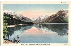 Vintage Montana Postcard - Lake McDonald, Glacier National Park (Unused)