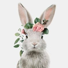 Printable Art by Jenny Kun 🐰 Save now on by TheCrownPri . - Printable Art by Jenny Kun 🐰 Save now on by TheCrownPrints- # printable - Cute Baby Animals, Animals And Pets, Funny Animals, Smiling Animals, Bunny Art, Cute Bunny, Lapin Art, Rabbit Art, Rabbit Drawing