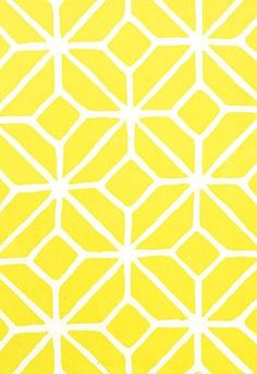 Trina Turk Outdoor chair fabric