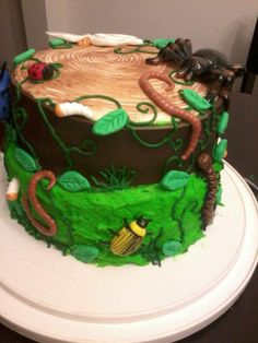 Bug Birthday Cakes, Sons Birthday, Birthday Party Themes, Birthday Ideas, Fear Factor Party, Reptiles, Man Vs Wild, 1970s Party, Survivor Party