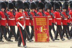 The 1st Battalion Grenadier Guards