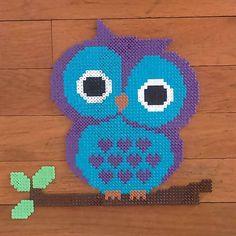 Owl hama beads by evakaroline84