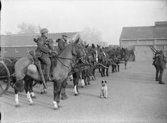 British Army, 1939-45 (H 764) Royal Army Service Corps horse-drawn transport company, Aldershot, 1939.