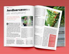 "Check out new work on my @Behance portfolio: ""Jordbærsæsonen på vestsjælland"" http://be.net/gallery/53228407/Jordbaersaesonen-pa-vestsjaelland"