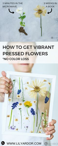 How to press flowers in 3 minutes. NO BOOK NEEDED! Mother's day gift ideas, or flower wall art!