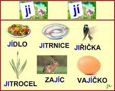 SOUHLÁSKY MĚKKÉ :: Béčko-Tc Štístkové Psp, Learning, Studying, Teaching, Onderwijs