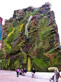 Vertical Garden at CaixaForum in Madrid by pdbreen, via Flickr...amazing :)