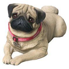 Sandicast Life Size Fawn Pug Sculpture - LS416