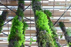 FOTOS: Patrick Blanc Hangs 67 Außerordentliche Vertical Garden T ...