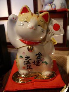 Cute lucky cat musical box