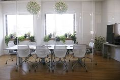 Office Plants: Care Tips and Recommendations from The Sill