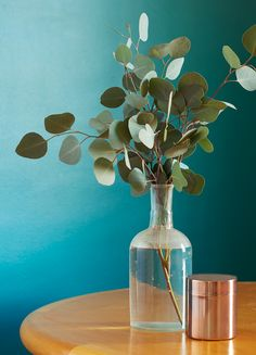 Copper accessories look wonderful against walls painted in Farrow & Ball's Vardo. Complement Vardo with varying shades of green - including kitchen plants - to create a look with plenty of depth. http://www.solidwoodkitchencabinets.co.uk/
