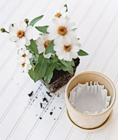 Coffee Filter as Soil Saver-  Place one filter over a flowerpot's drainage hole to prevent soil from leaking out.