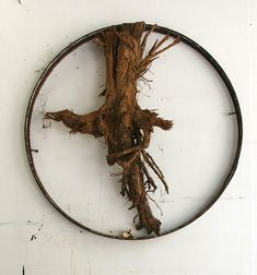 Margaret Booze  Wagon Wheel, Clay encrusted root