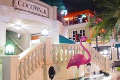 CocoWalk - Coconut Grove, Florida,....great memories living a few blocks from here. Old stomping grounds.