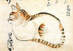 Chat assis - Seated cat    Matsumura Goshun (1752-1811),  Japon,  Metropolitan Museum of art, New York