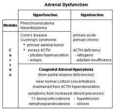 The symptoms of adrenal disease result from abnormal circulating hormone concentrations because of altered function.